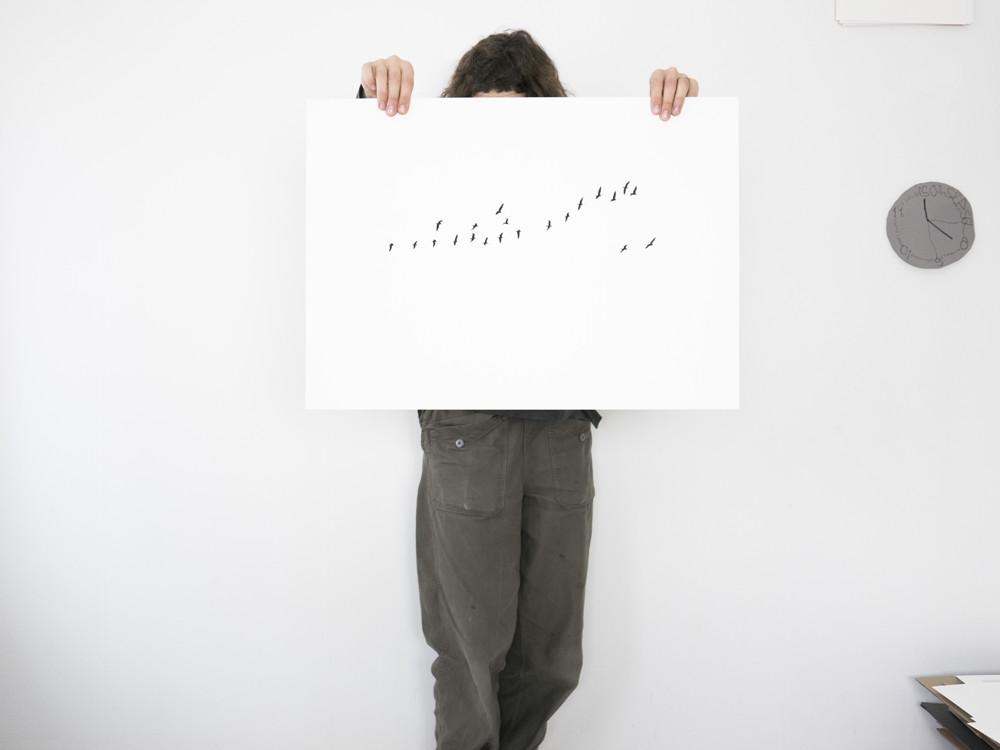Birds-Holding-P1040704