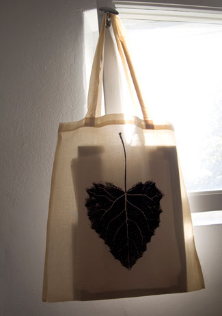 Tote bag in window.